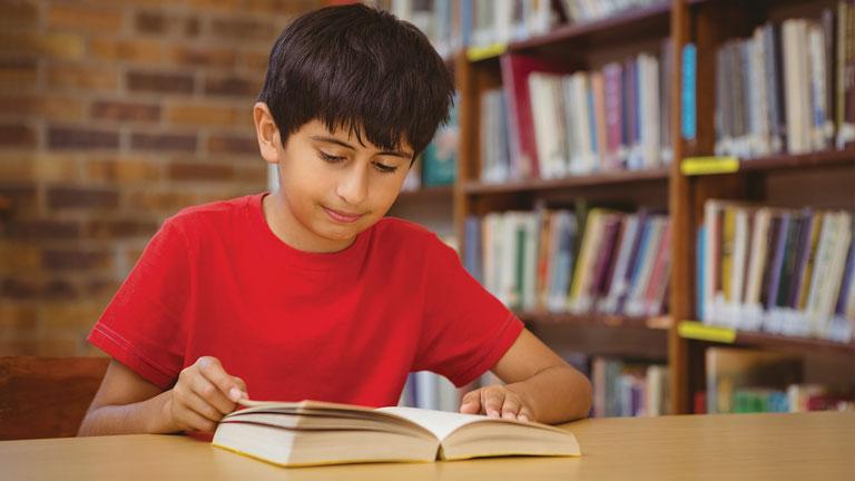 Habilidades Lectoras